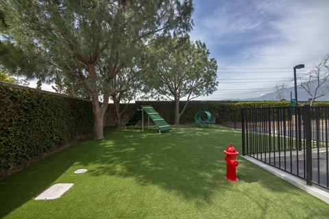 Pet Friendly Apartments in Rancho Cucamonga CA-Victoria Arbors Apartments Dog Park