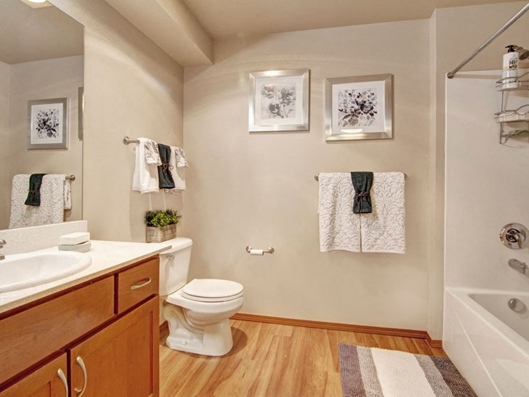 Echo Lake Bathroom with wood inspired flooring