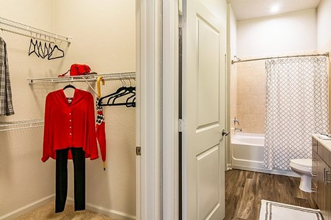 The Alexander at Sabal Point Closet and Bathroom