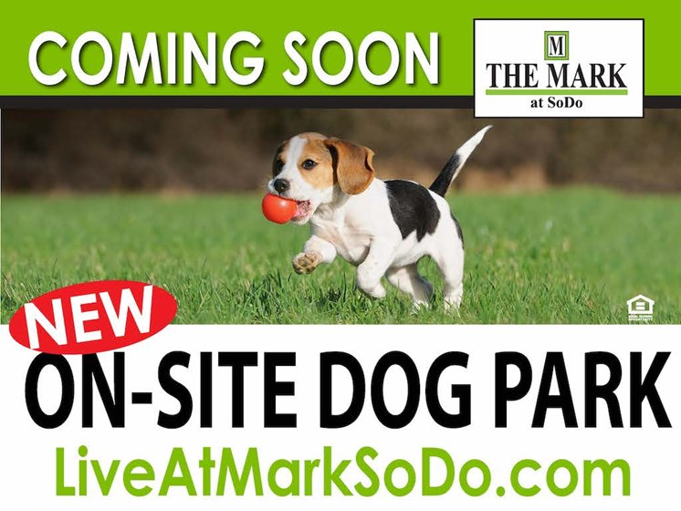 The Mark at SoDo apartments in South Downtown Orlando, FL 32806 Bark Park Dog Park