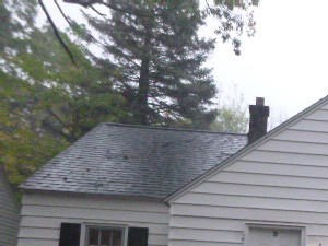 2920 Temple St 3 Beds House for Rent Photo Gallery 1