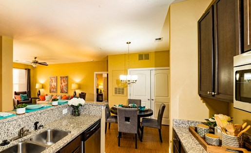Granite Countertops in Kitchen at Gateway at Rock Hill, Rock Hill, SC, 29730