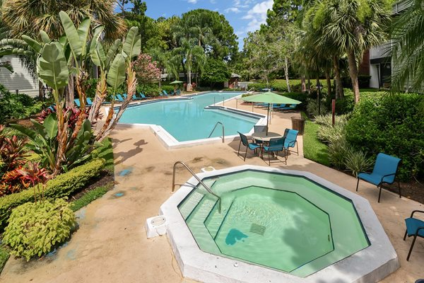 Hot Tub / Pool | The Park at Elland Apartments in Clearwater, Fl