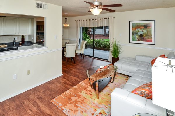 Living Room 3 | The Park at Elland Apartments in Clearwater, Fl