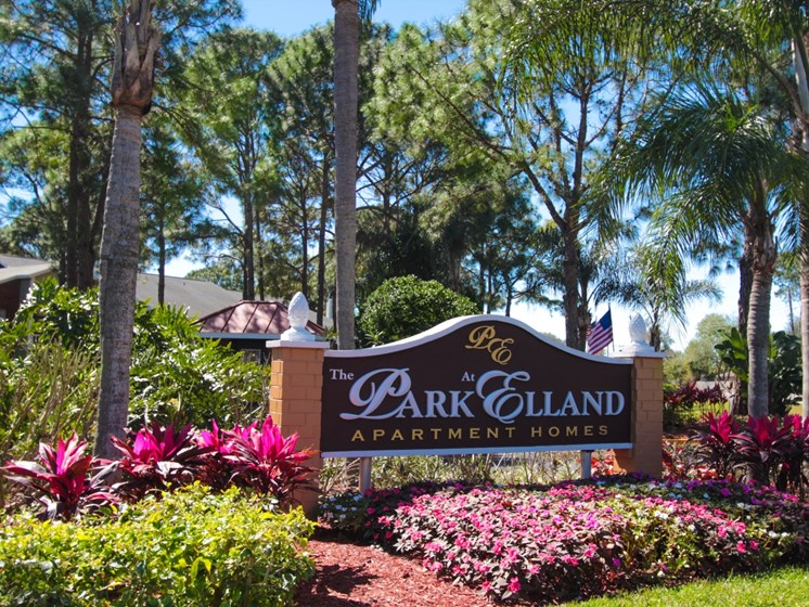 Courtyard   The Park at Elland Apartments in Clearwater, Fl