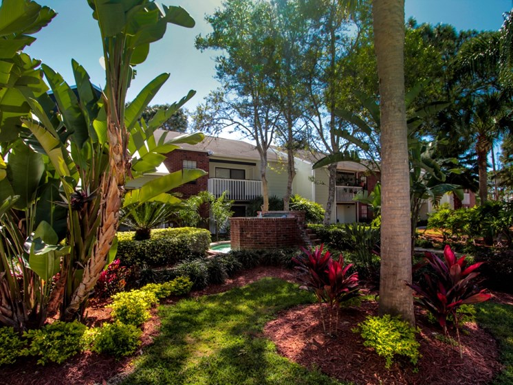 Landscaping   The Park at Elland Apartments in Clearwater, Fl