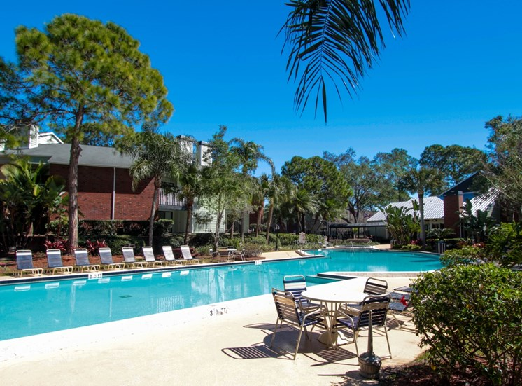 Sparkling Pool | The Park at Elland Apartments in Clearwater, Fl