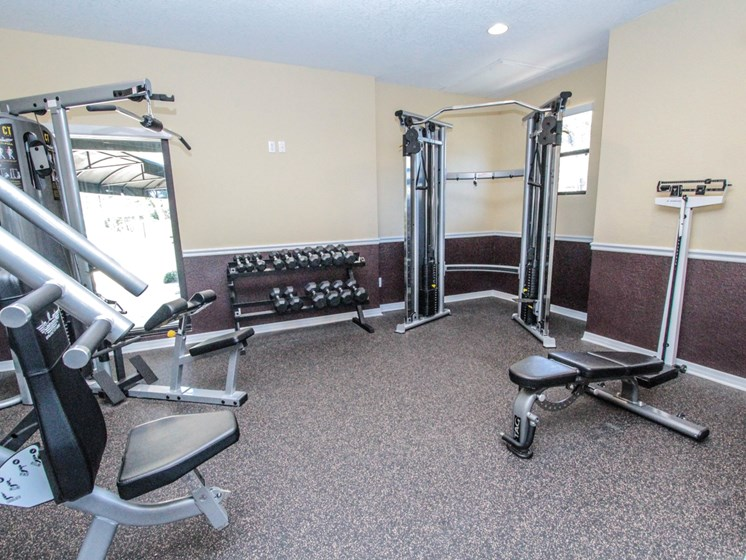 Fitness Center   The Park at Elland Apartments in Clearwater, Fl