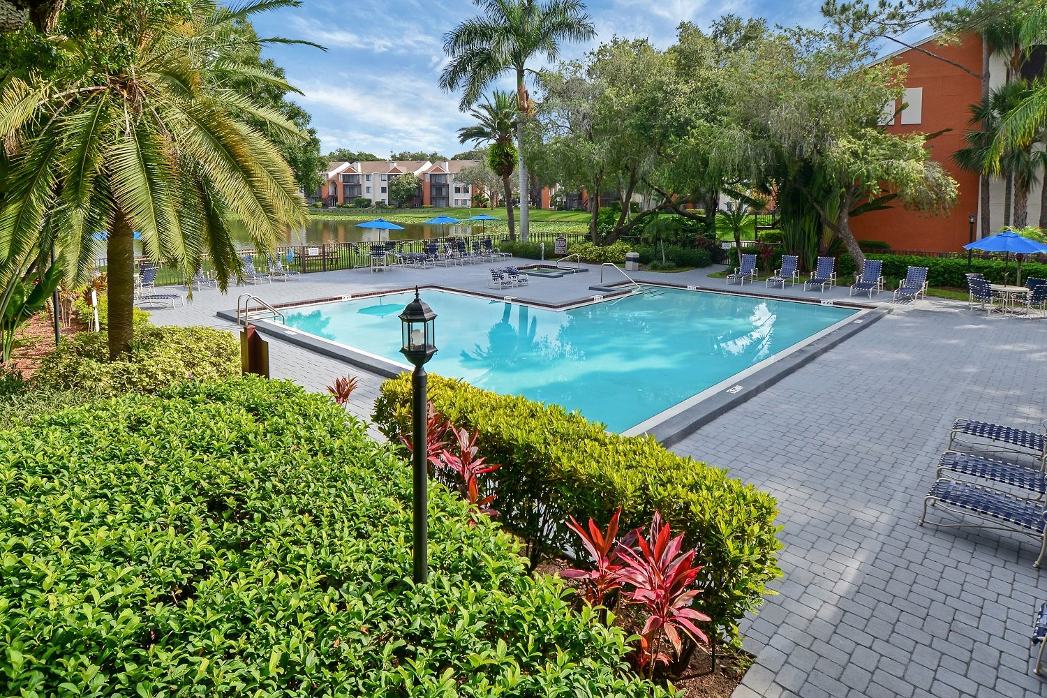 Pool | The Park at Gibraltar Apartments Clearwater Tampa, Fl