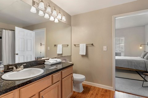 Regency at First Colony |  Bathroom with Vanity Lights