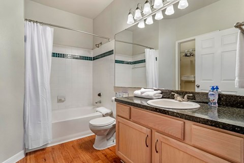 Regency at First Colony |  Bathroom with Vanity Lights and Garden Style Tub