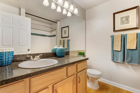 Regency at First Colony |  Bathroom