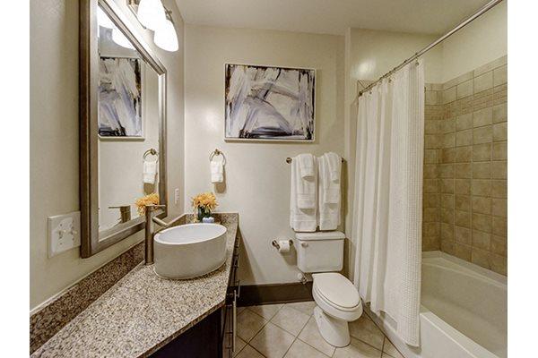 Spa Inspired Bathroom at 712 Tucker, Raleigh, NC