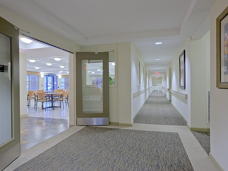Affordable Pet-friendly apartments Baltimore City