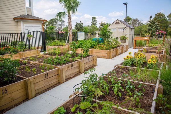 Community Garden and Private Plots at Altis Sand Lake, Orlando, FL 32836