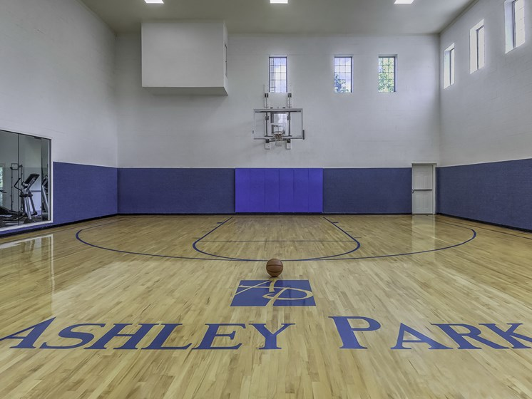 Apartment with Indoor Basketball Court