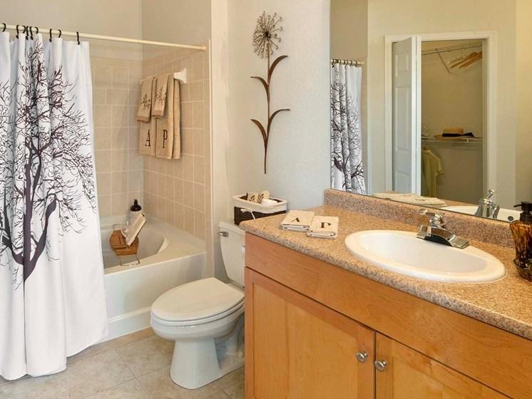 Ashley Park in Brier Creek Bathrooms