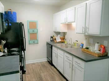 2040 Ashley River Road 1-3 Beds Apartment for Rent Photo Gallery 1