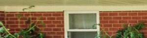 Murfreesboro banner 1