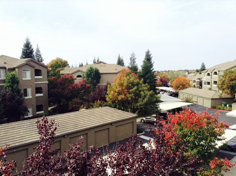View of Roseville, CA Apartments for Rent - Pinnacle at Galleria