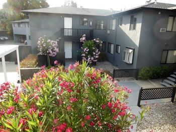 1945 Latham Street #8 1-3 Beds Apartment for Rent Photo Gallery 1