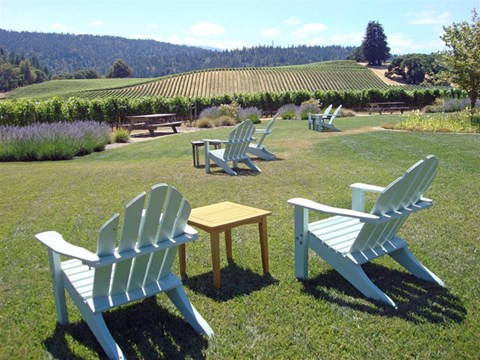 Lounge Chairs  | The Reserve in Rohnert Park, CA 94040