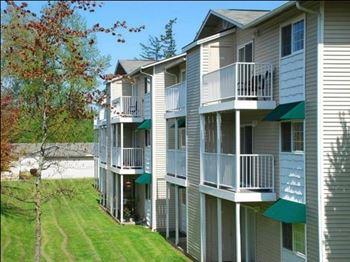 Cheap Apartments in Washington