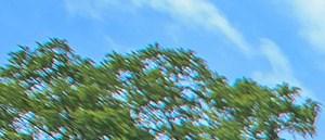 Clarksville banner 1
