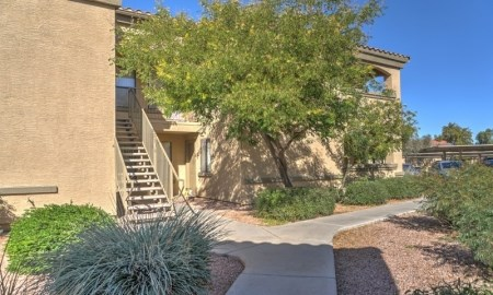 Well Landscaped Grounds at The Colony Apartments, 351 N Peart Rd, Casa Grande, AZ