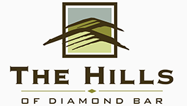 Diamond Bar Property Logo 1