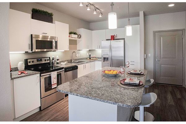 Granite countertops and stainless steel appliances in the kitchen at Anson on Palmer Ranch in Florida.