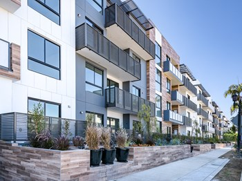 711 Cole Avenue 2-3 Beds Apartment for Rent Photo Gallery 1