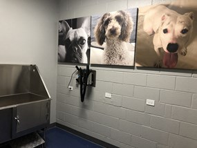 Convenient Dog Wash Station at Wave, Chicago, IL, 60657