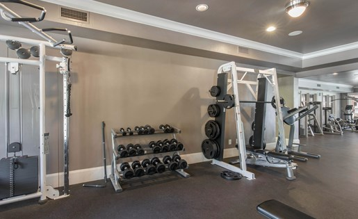 The Lincoln at Towne Square Apartments in Plano, TX Fitness Center with Free Weights
