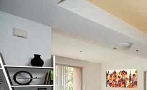Wood Plank Floors with 9 foot Ceilings