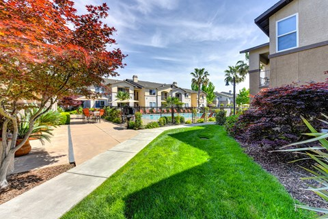 Path to buildings l Eaton Village Apartments in Chico CA