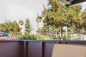 Yard size patios