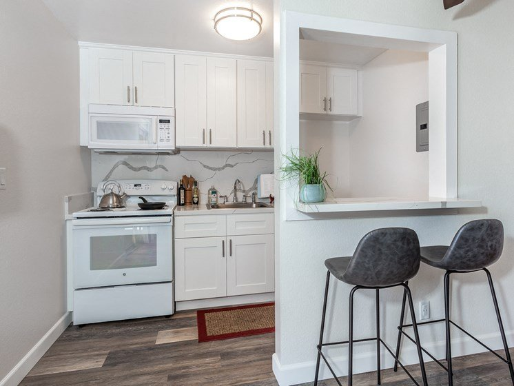 Modern  Studio and 1 B Kitchen with Quartz Counter and New Cabinets
