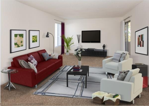 Spacious Living Room with Designer Carpet