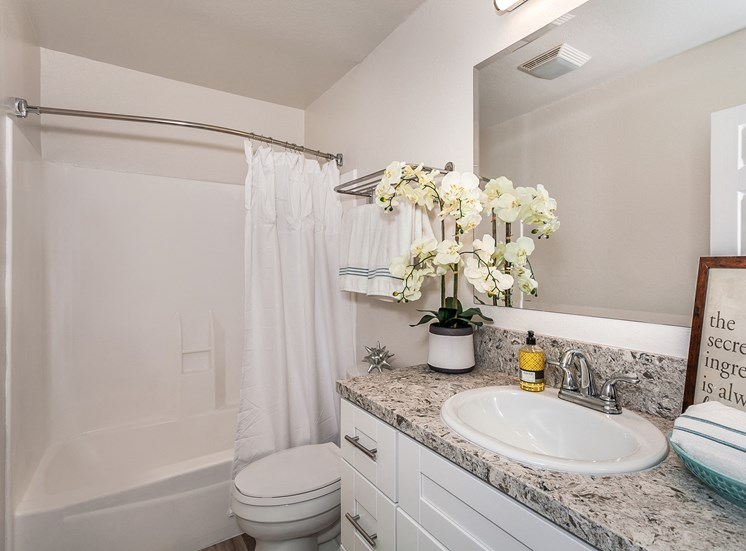 Studio and 1 B Bath Bathrooms with Quartz Counters and New Cabinets