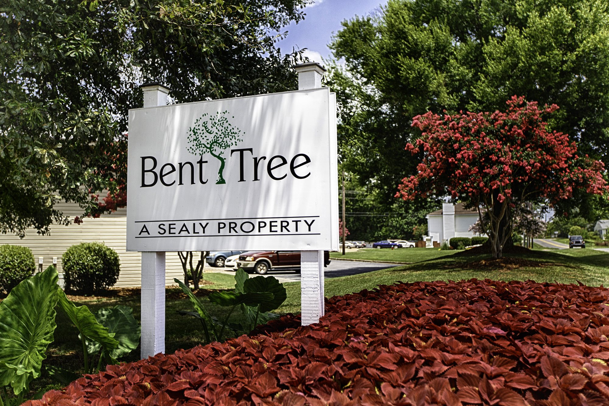 Photos and Video of Bent Tree Apartment Homes in Tuscaloosa, AL