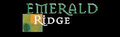 Huntsville Property Logo 43