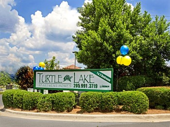 One Turtle Lake Drive 1-2 Beds Apartment for Rent Photo Gallery 1