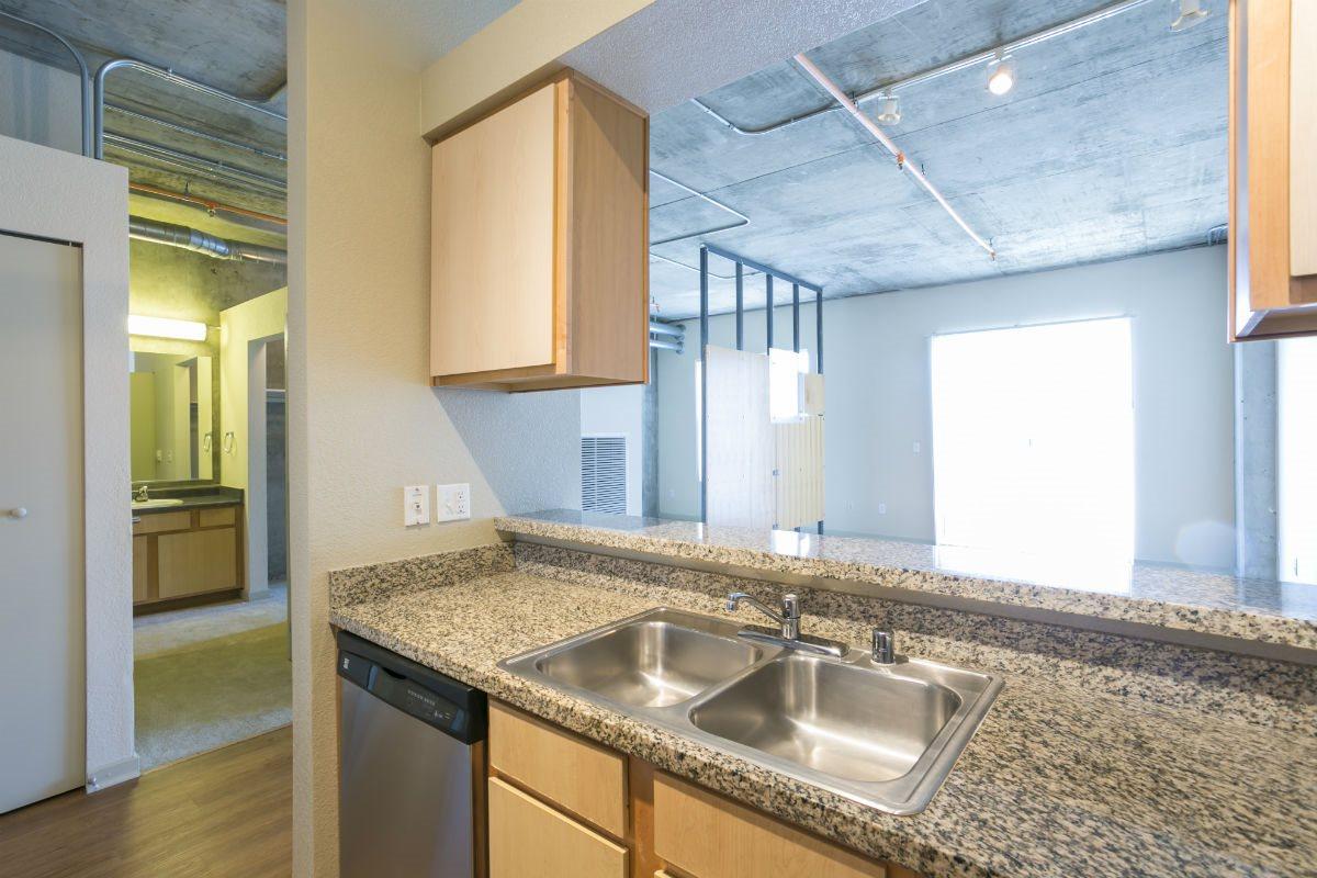 Ballpark Loft Apartments Double Basin Sink