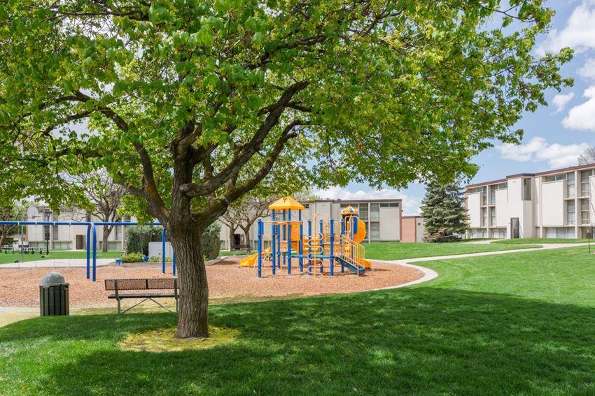 Playground Cedar Court