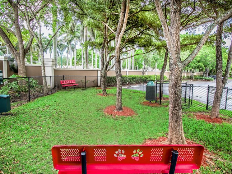 The Enclave Apartments| Dog Park