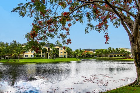 Palm Trace Landing|Water View