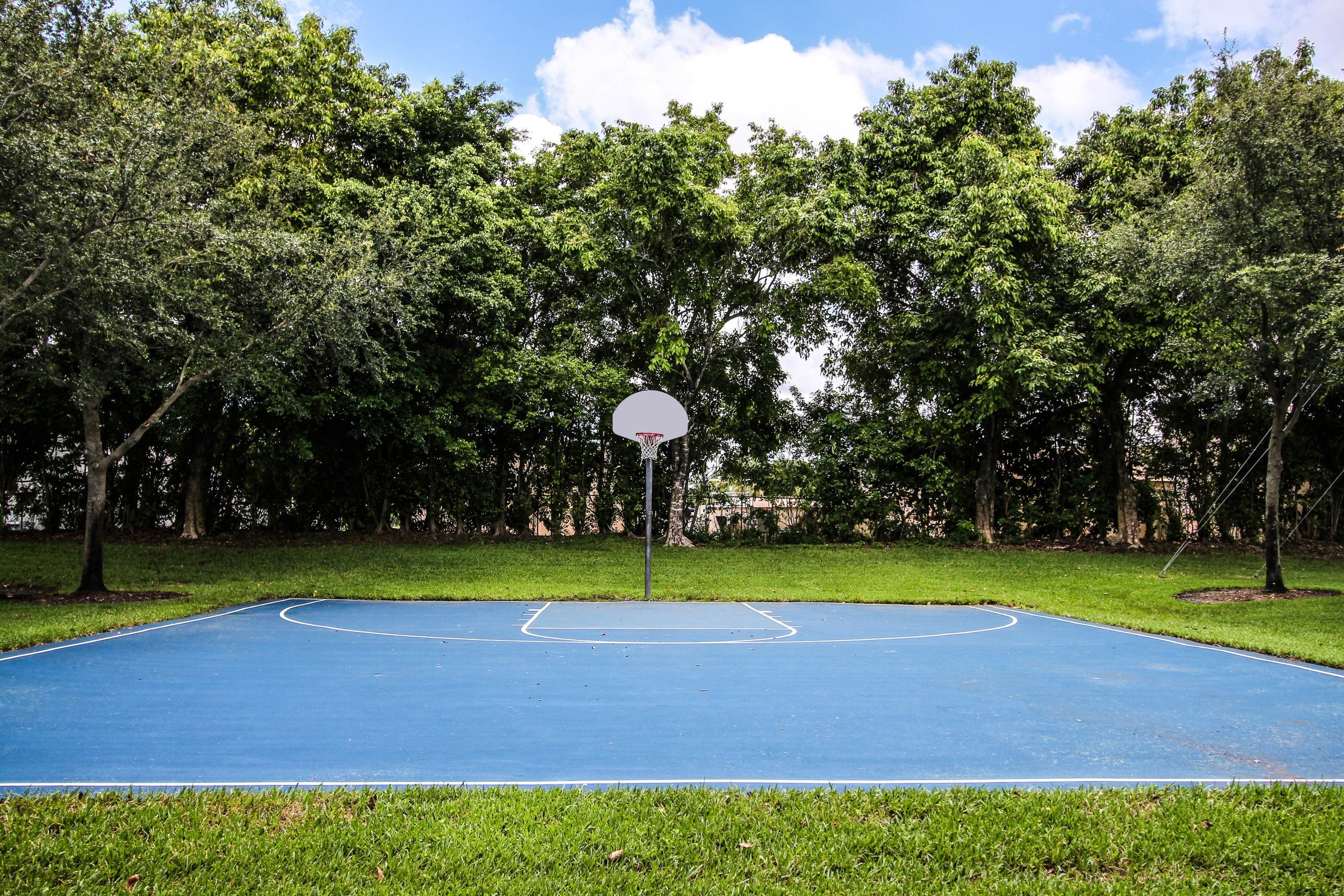 Palm Trees Landing|Outdoor Basketball Court