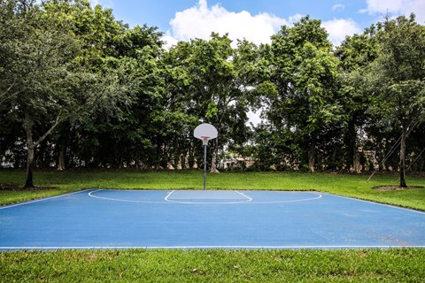 Palm Trace Landing|Outdoor Basketball Court