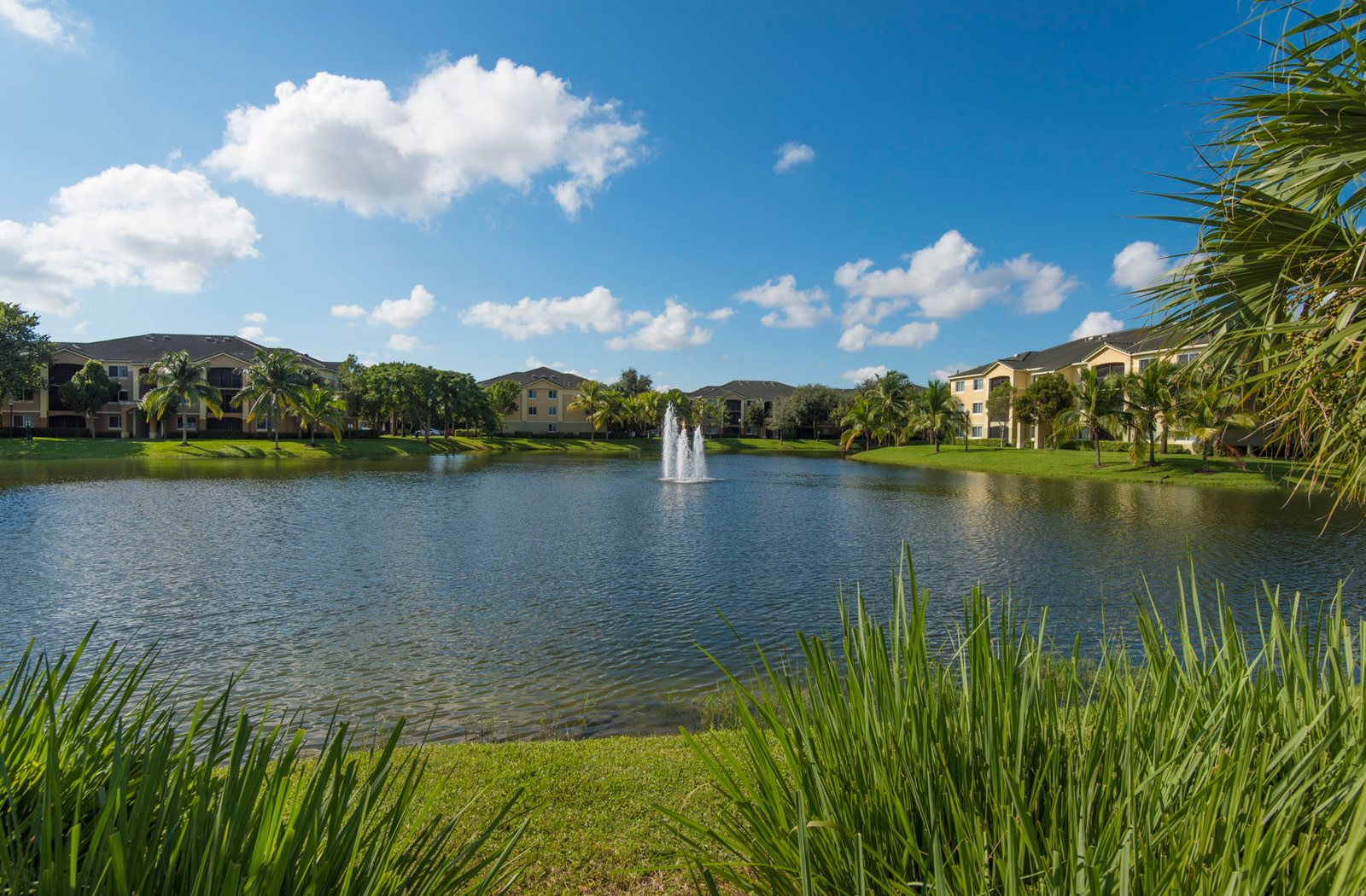 Apartments In Davie Fl Palm Trace Landings Apartments